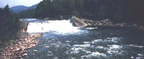 Tovdal River in Norway where salmons died